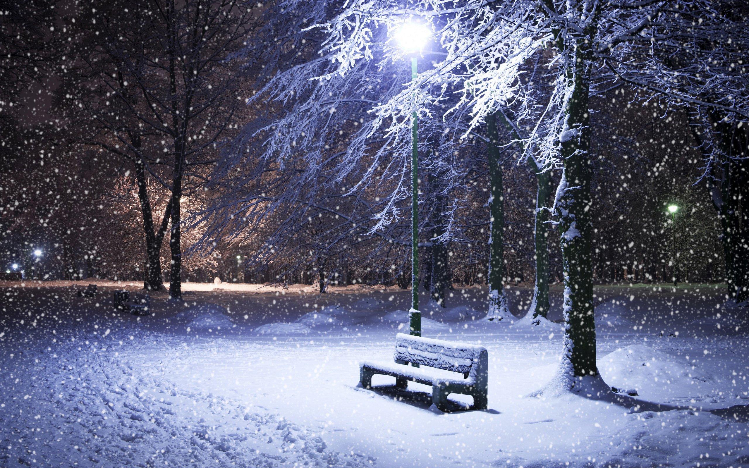 Winter Snow Nature Landscape Wallpaper 2560x1600