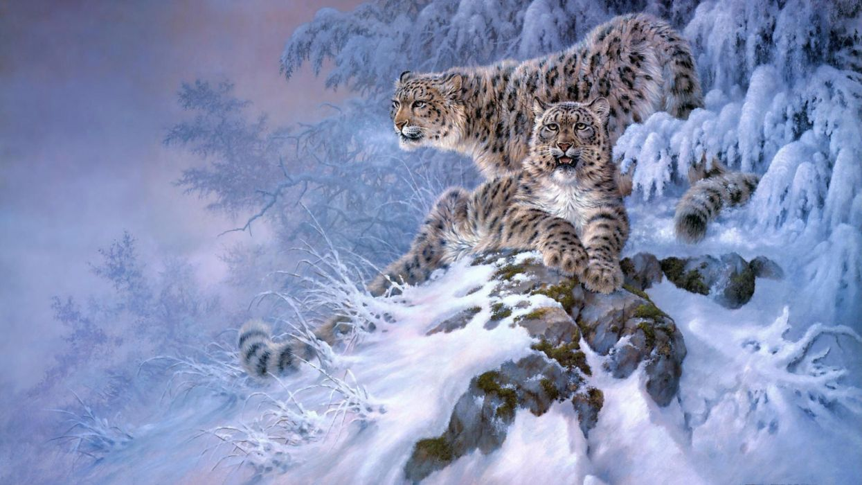 winter snow nature landscape leopard art artwork cat wallpaper