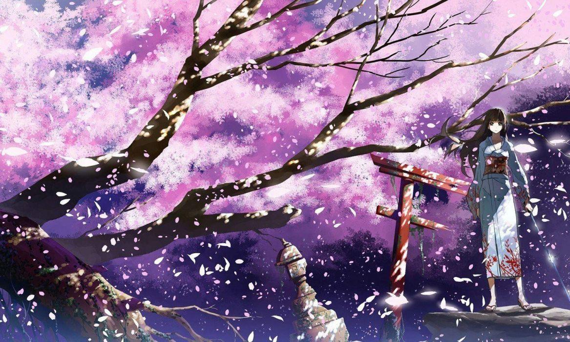 anime girl tree sakura beautiful long hair kimono sword petals wallpaper