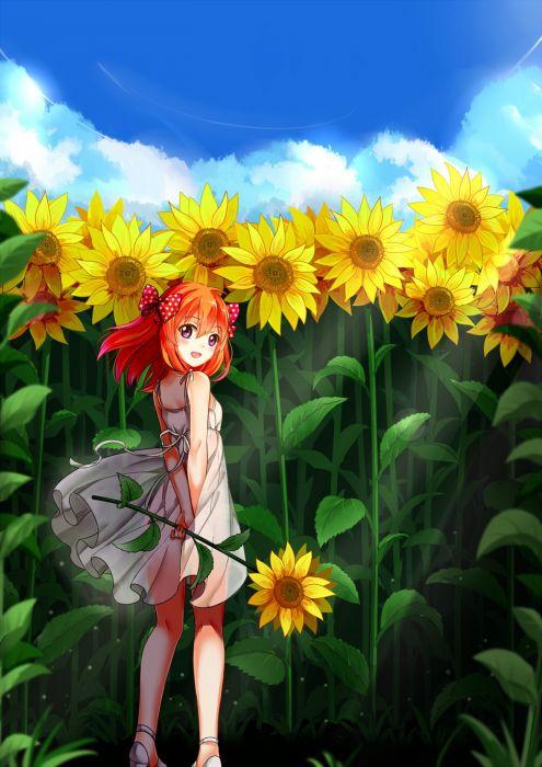 anime girl gekkan shoujo nozaki-kun sakura long hair anime series summer cute girl sunflower beauty dress wallpaper