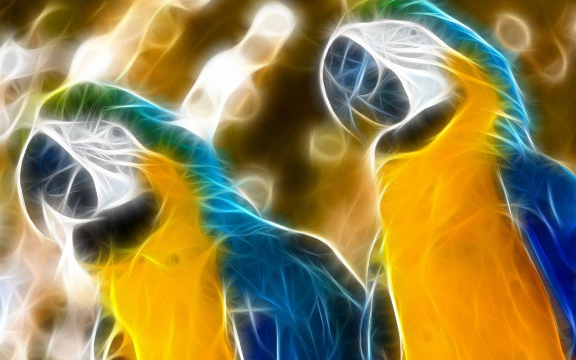 loros abstractos arte wallpaper