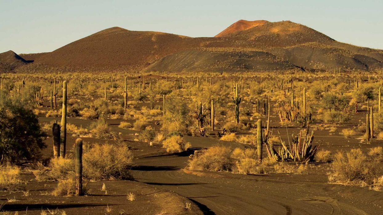 desierto sonora estados unidos america wallpaper