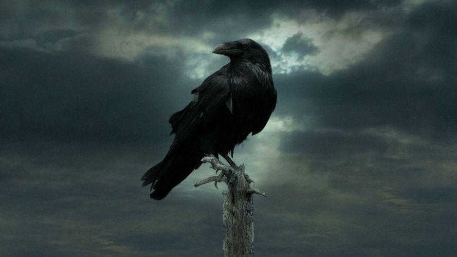 GAME OF THRONES adventure drama hbo fantasy series adventure poster gothic dark crow raven wallpaper