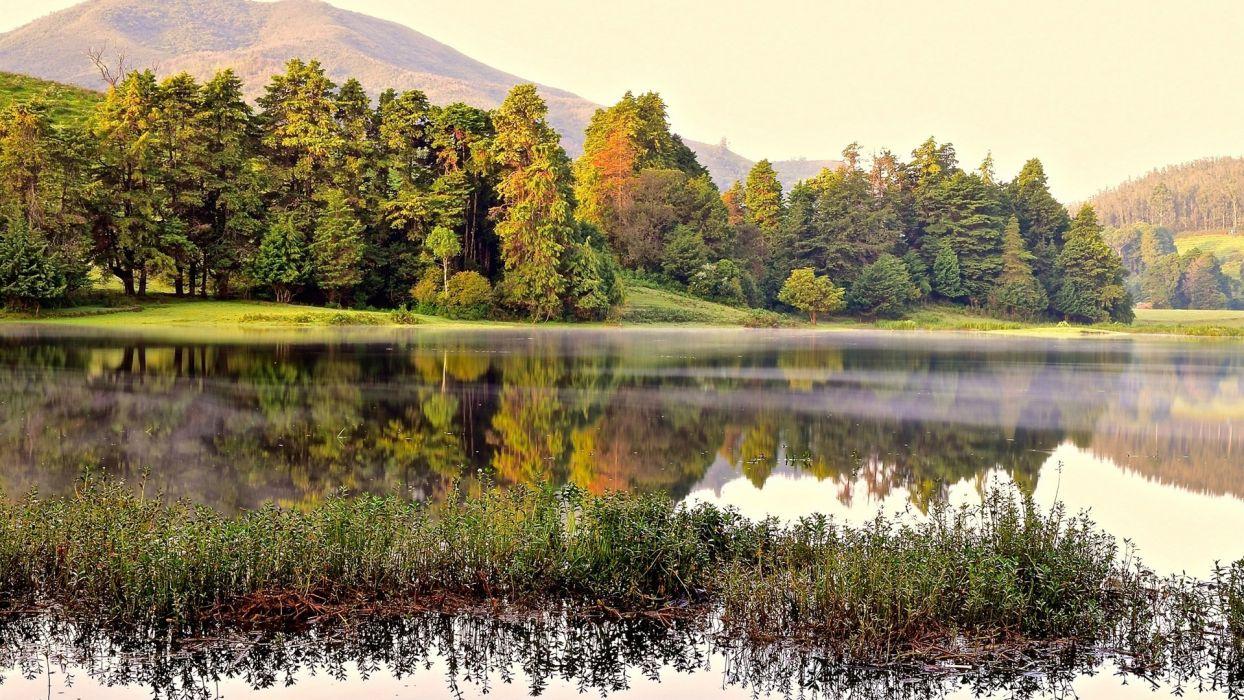 lago naturaleza arboles wallpaper