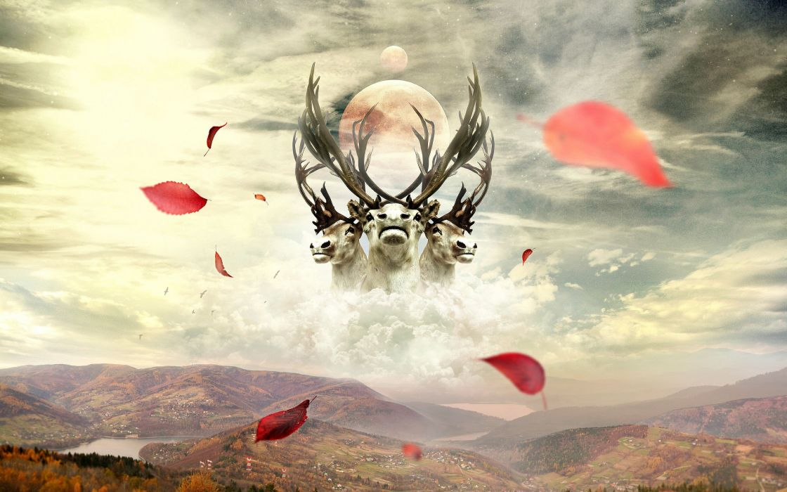 art artwork photoshop manipulation fantasy photo artistic psychedelic wallpaper