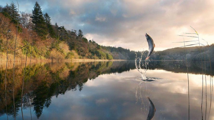art artwork photoshop manipulation fantasy photo artistic fishing fish lake wallpaper
