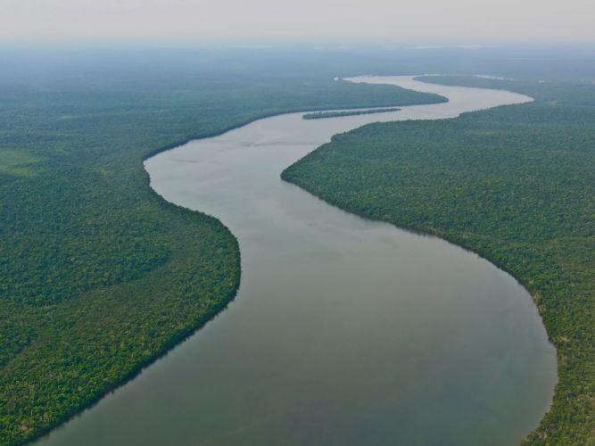 rio amazonas brasil sudamerica selva wallpaper