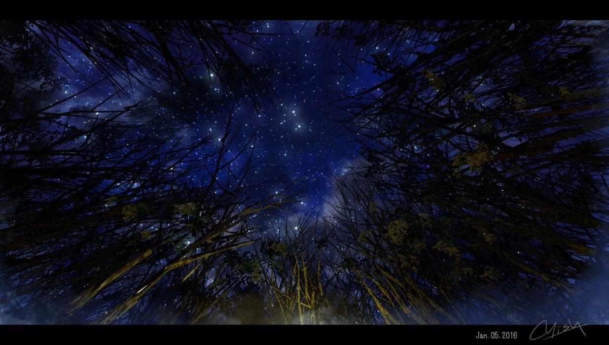 clouds night nobody original signed sky stars tree waisshu (sougyokyuu) wallpaper