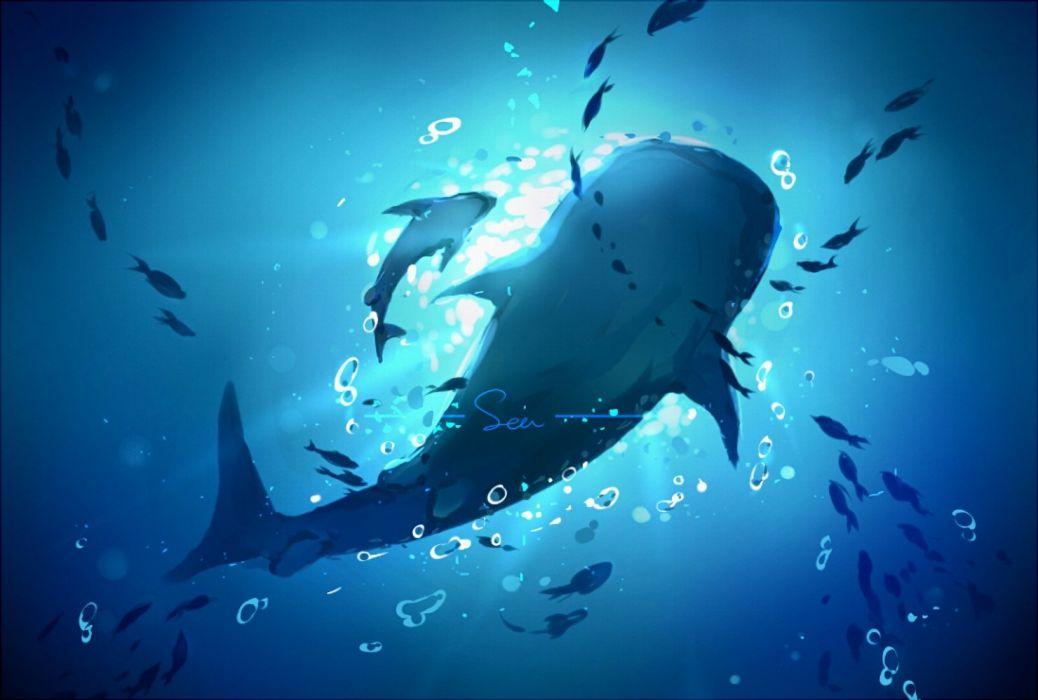 animal free! nobody scenic underwater water yuzhi wallpaper