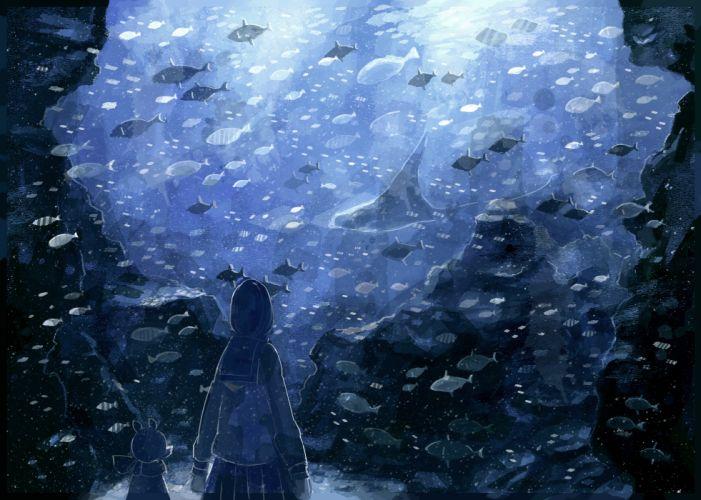animal blue fish nomiya (no 38) original wallpaper
