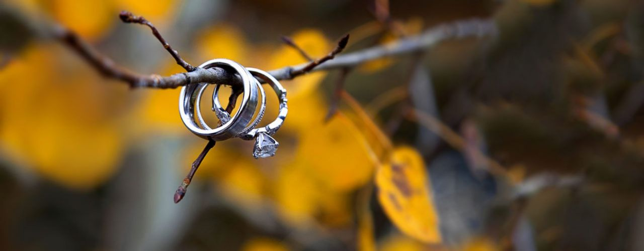 ring married nature love mood beauty tree wallpaper