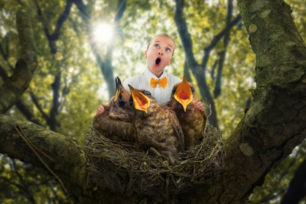 funny humor creative situation art artwork photoshop manipulation fantasy photo artistic psychedelic wallpaper