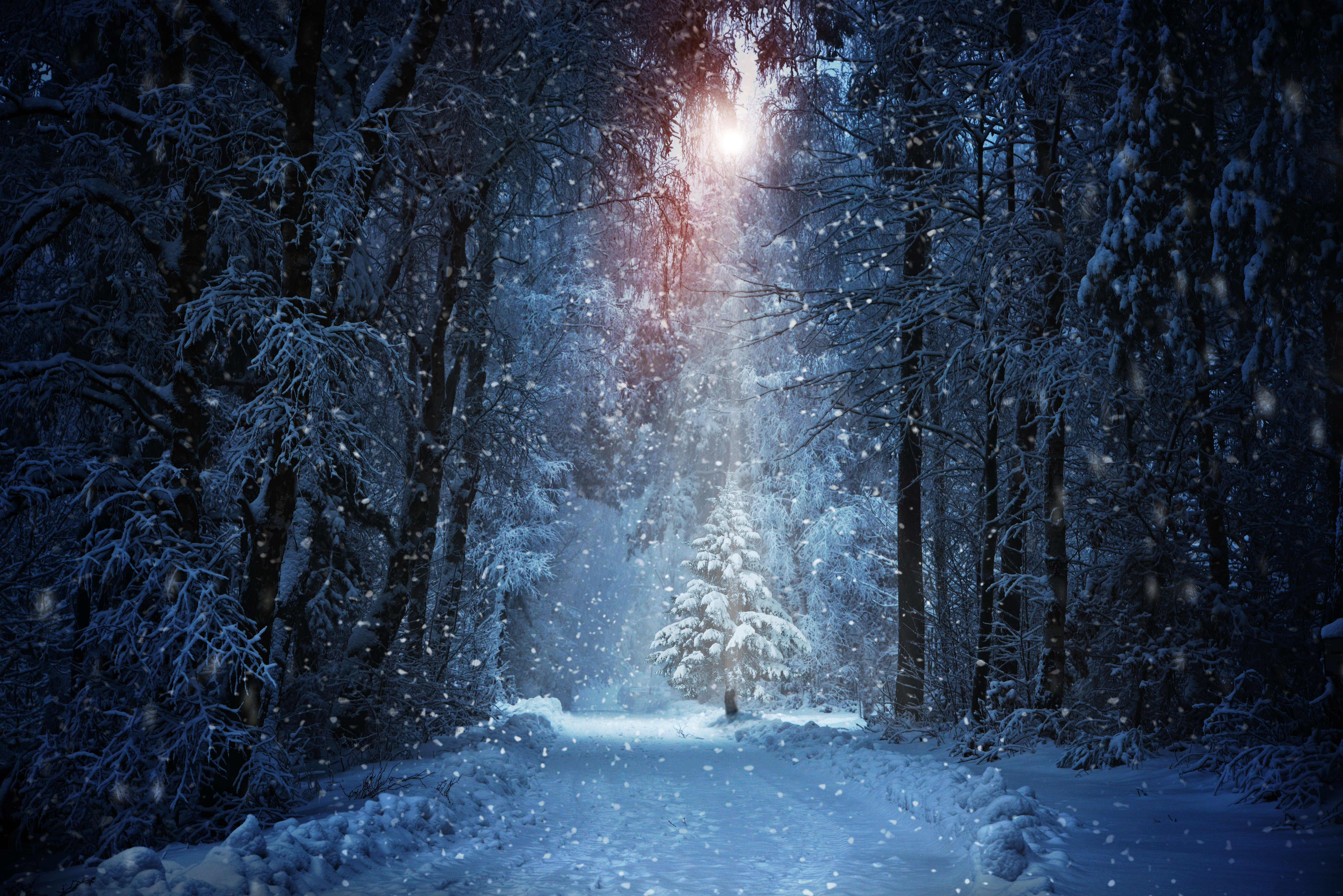 Real Fairytale Landscapes Winter snow nature lan...