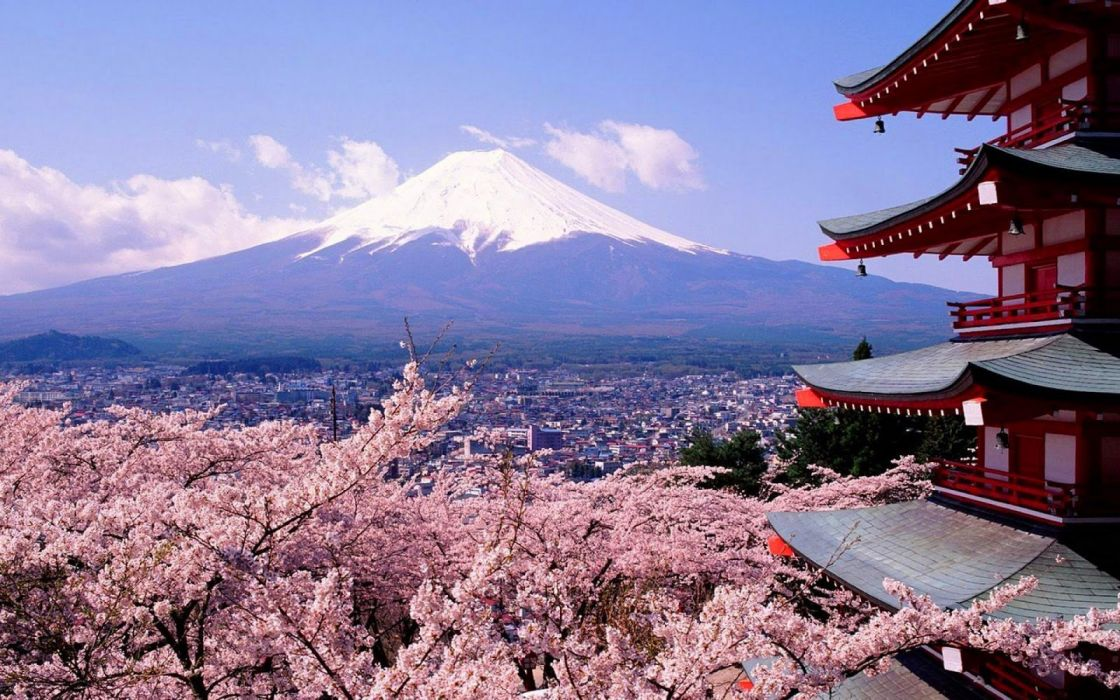 tokyo city spring tree flower beautiful mountain wallpaper