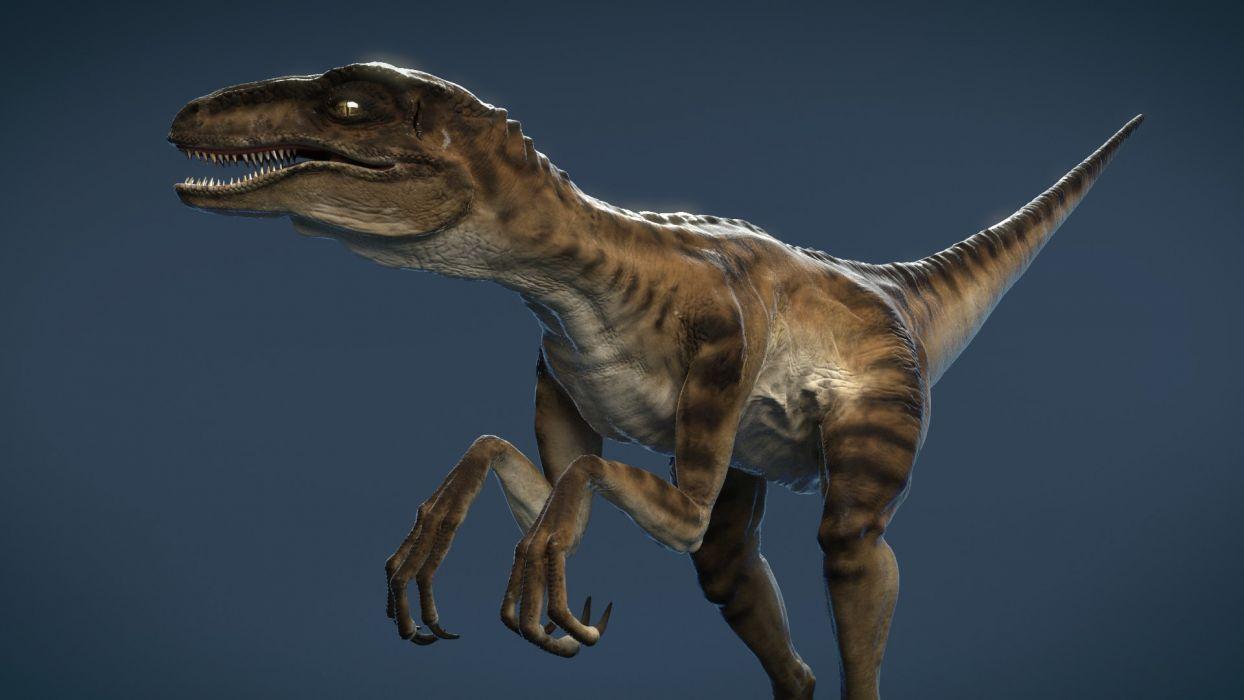 velociraptors dinosaurio reptiles animales wallpaper