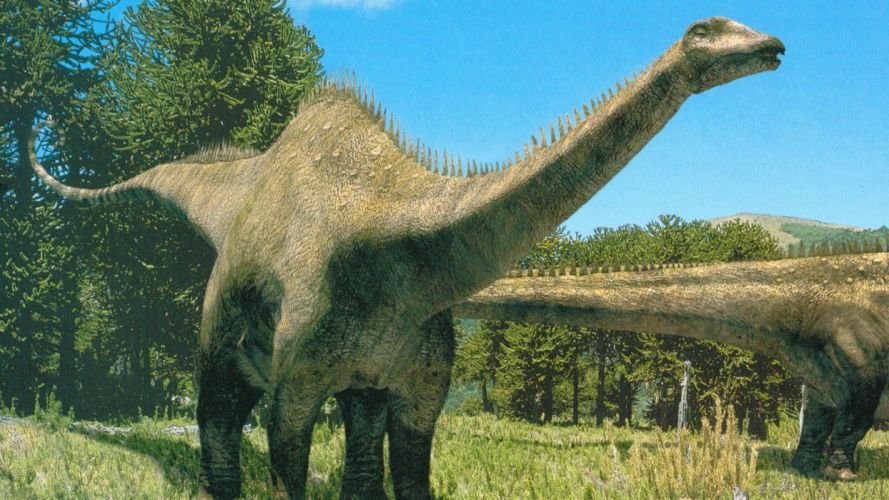 diplodocus dinosaurio reptiles animales wallpaper