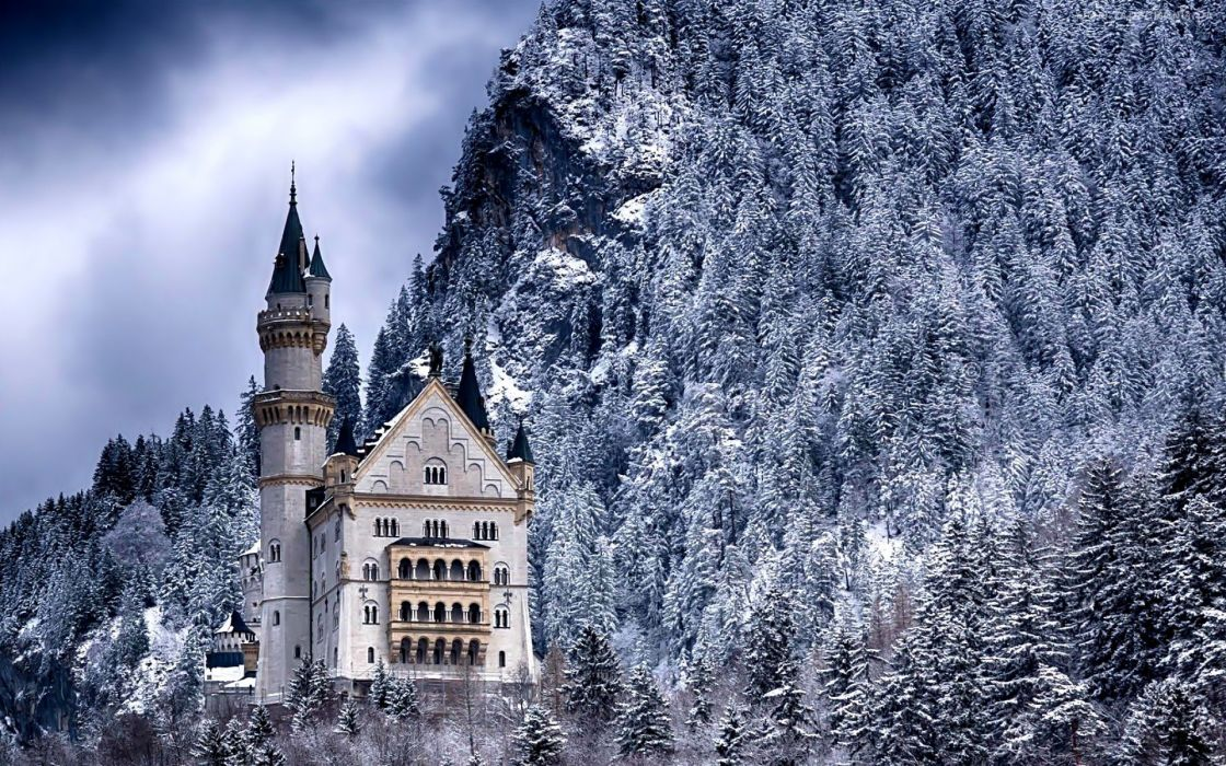 forest trees nature landscape tree winter castle wallpaper