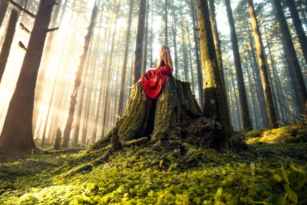 forest trees nature landscape tree autumn fantasy girl mood cosplay wallpaper