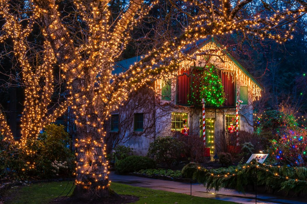 Canada Holidays Christmas Houses Vancouver Night Fairy lights Trees Shrubs Butchart Gardens christmas Cities wallpaper