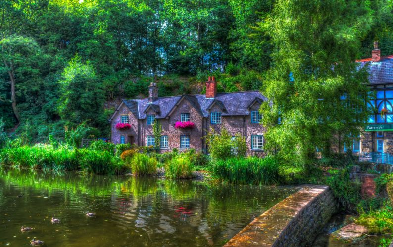 England Houses Pond Ducks Summer HDR Trees Lymm Cities wallpaper
