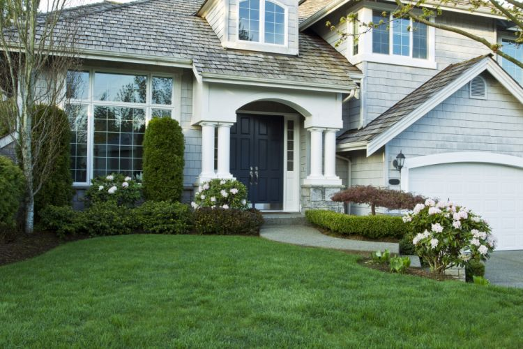 Houses Mansion Shrubs Lawn Cities wallpaper