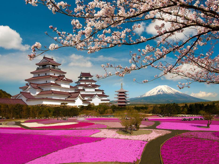 Japan Parks Mountains Pagodas Sakura Volcano Branches Aizuwakamatsu Castle Tsuruga Castle Fukushima Mount Fuji Cities wallpaper