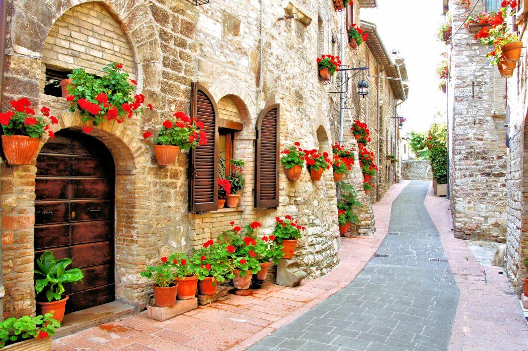 italy street buildings flowers geranium wallpaper