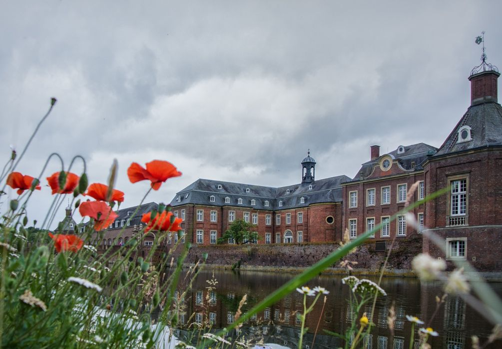 Rivers Poppies Houses Cities Flowers wallpaper