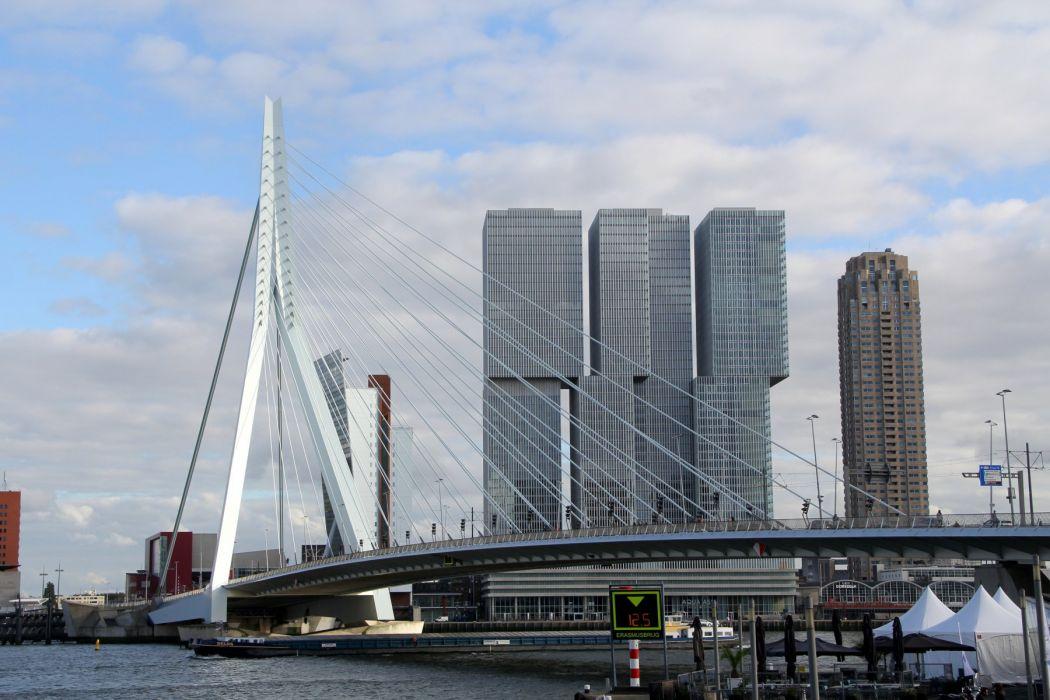 Rotterdam wallpaper