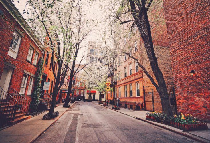USA Houses New York City Street Trees Cities wallpaper