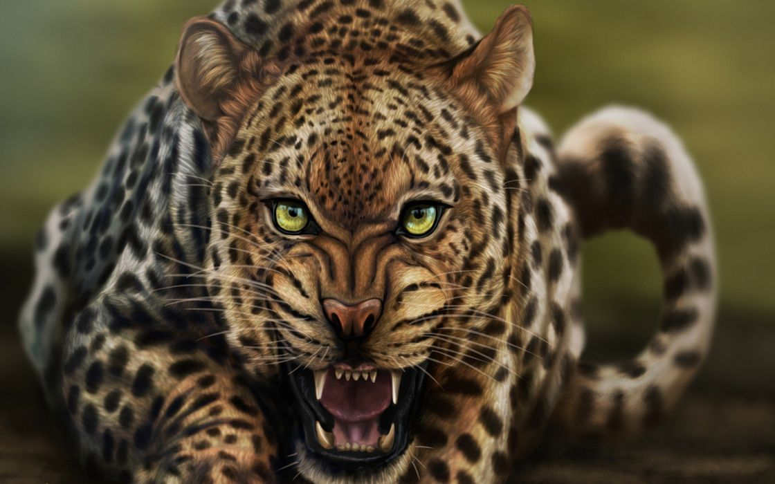 beauty cute amazing animal Angry Wild Leopard Animal wallpaper