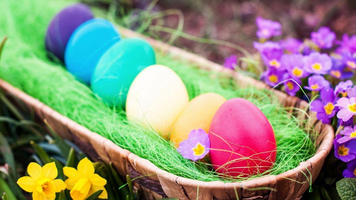 huevos colores pascua cesta wallpaper