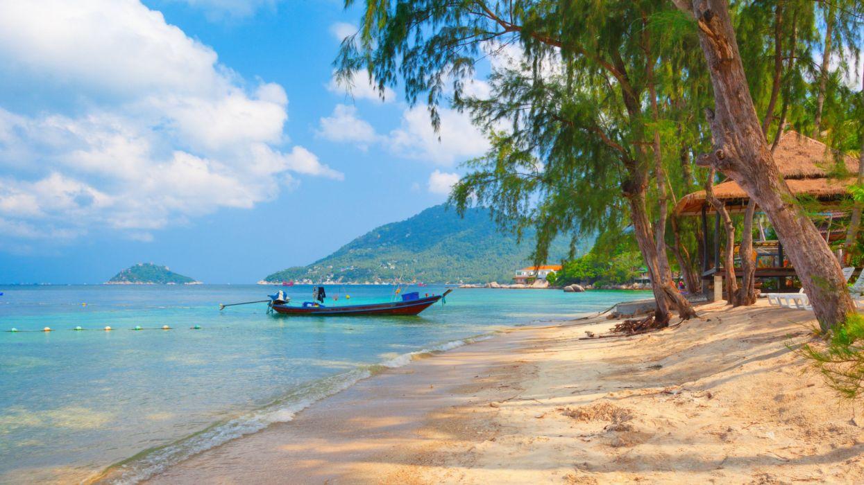 playa barco palmeras mar naturaleza wallpaper