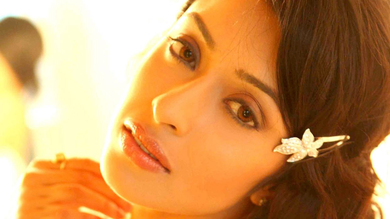 Payal Ghosh bollywood actress model girl beautiful brunette pretty cute beauty sexy hot pose face eyes hair lips smile figure indian  wallpaper