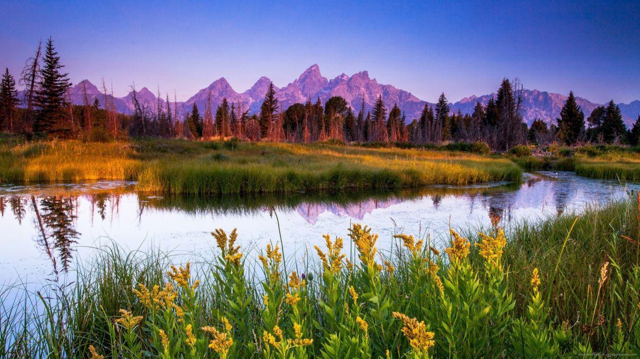 rio flores paisaje naturaleza montaA wallpaper