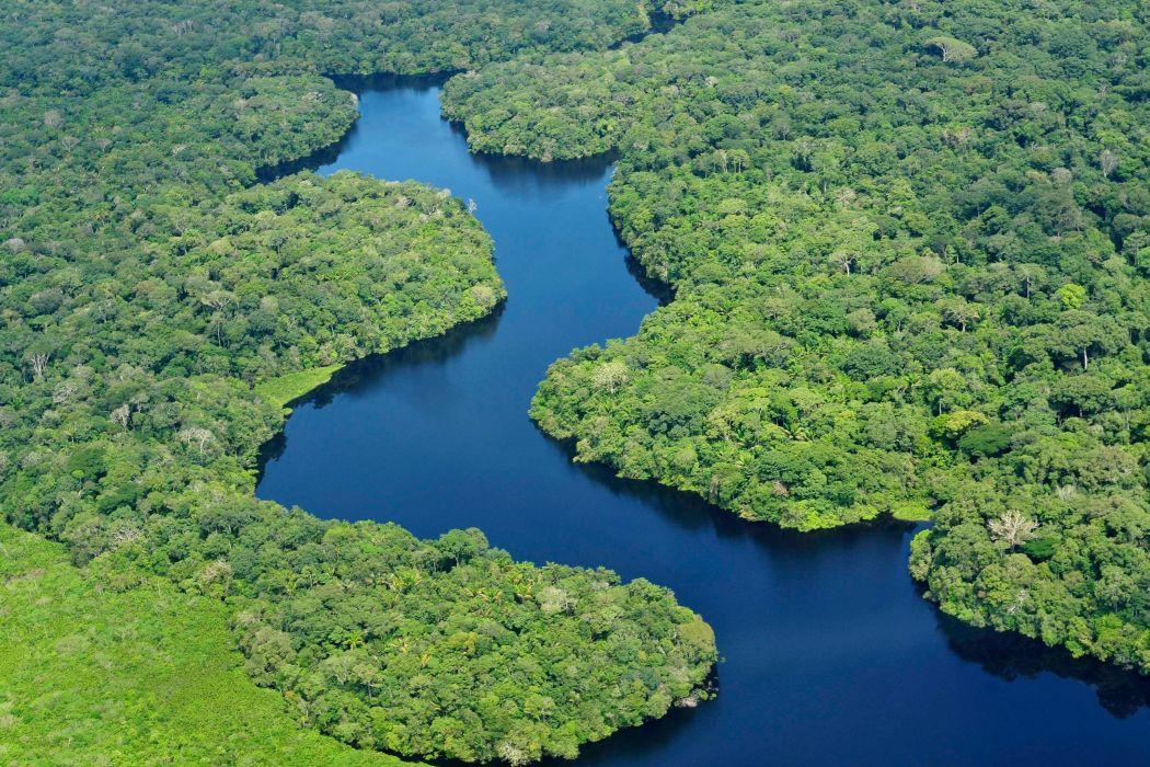 rio amazonas selva brasil naturaleza wallpaper