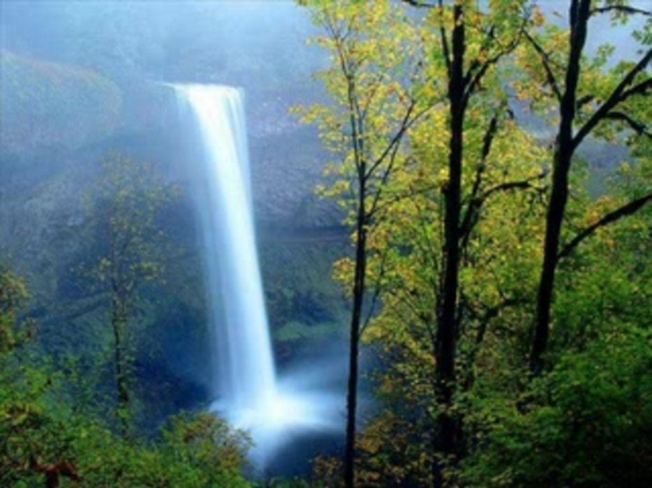 cascada selva naturaleza arboles wallpaper