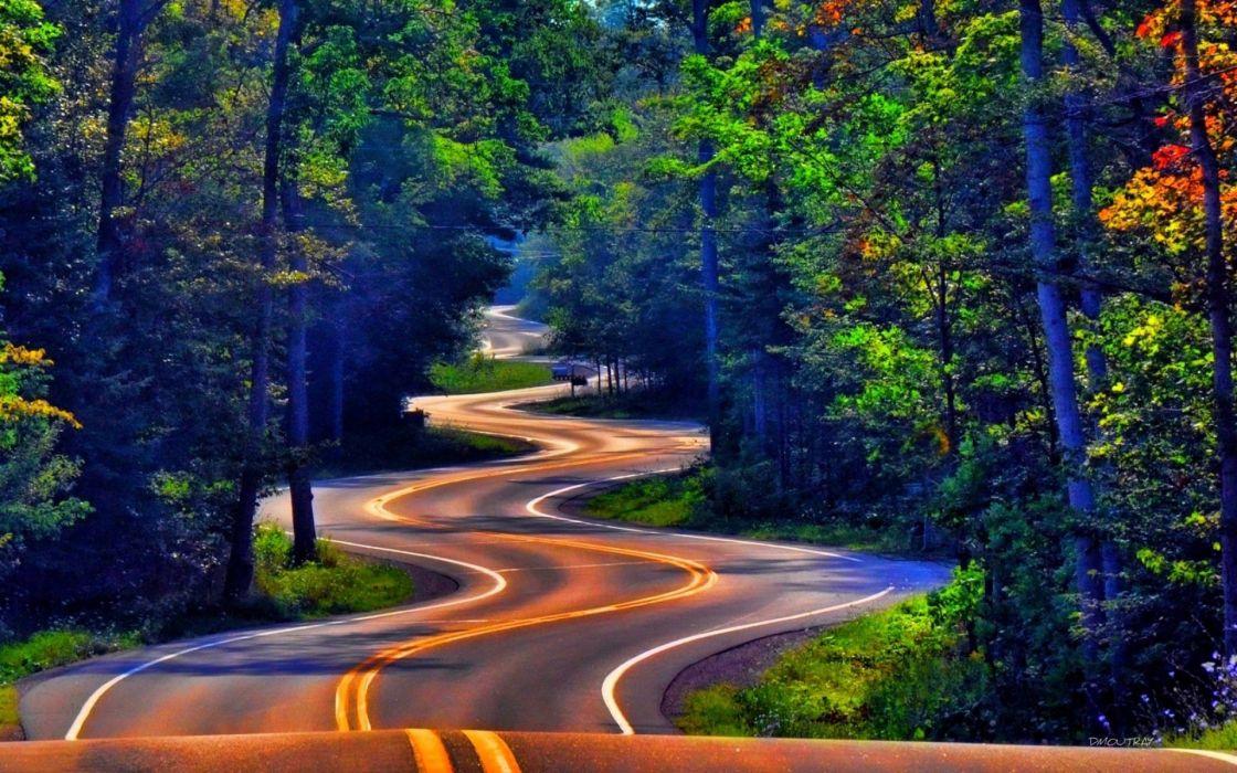 carretera curvas arboles naturaleza wallpaper