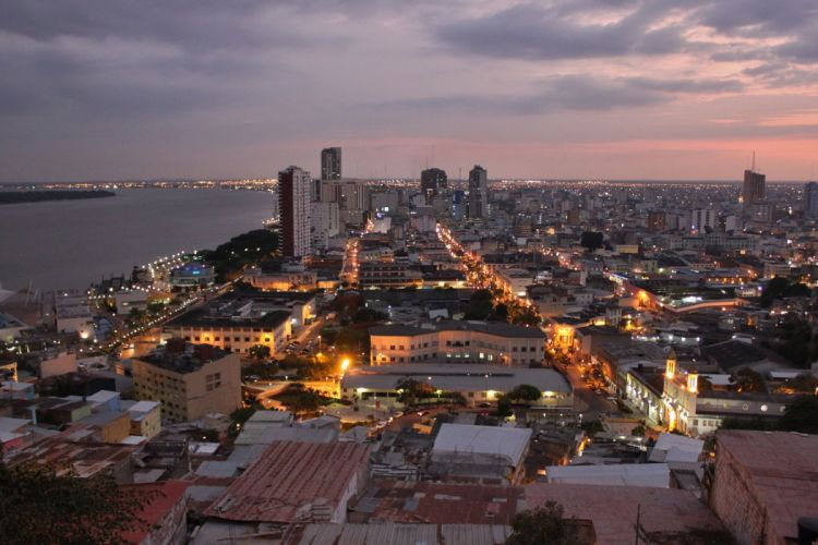 ciudad guayaquil ecuado sudamerica luces edificios wallpaper