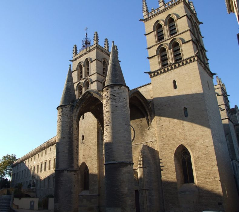 catedral saint pierre montpellier francia arquitectura wallpaper