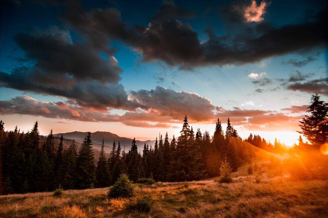 naturaleza bosque puesta sol nubes wallpaper