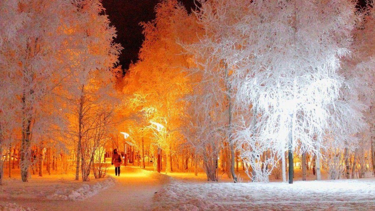 arboles nieve blancos invierno naturaleza wallpaper