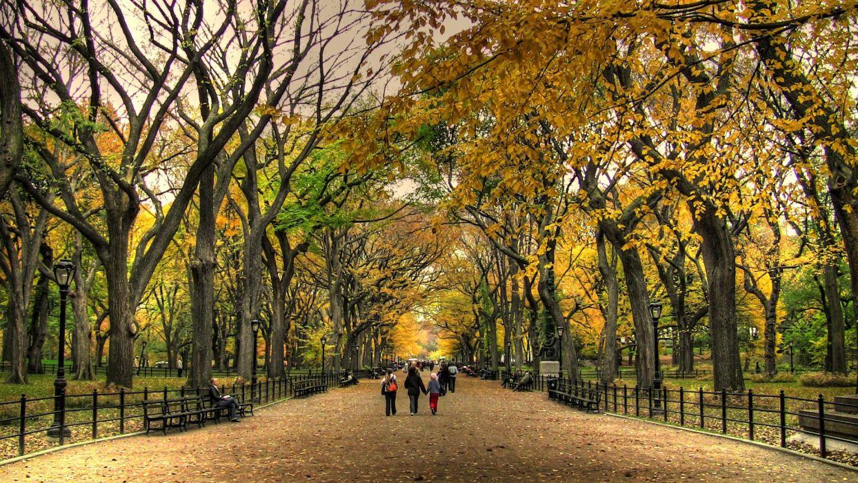 Central Park Autumn landscape nature beauty wallpaper