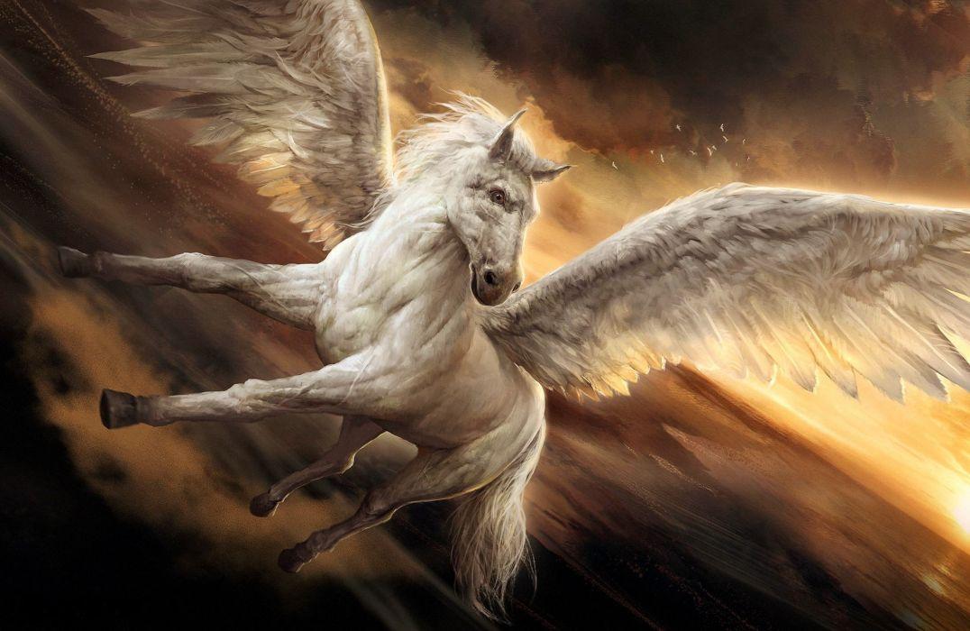 fantasy pegasus wings beauty horse beautiful wallpaper