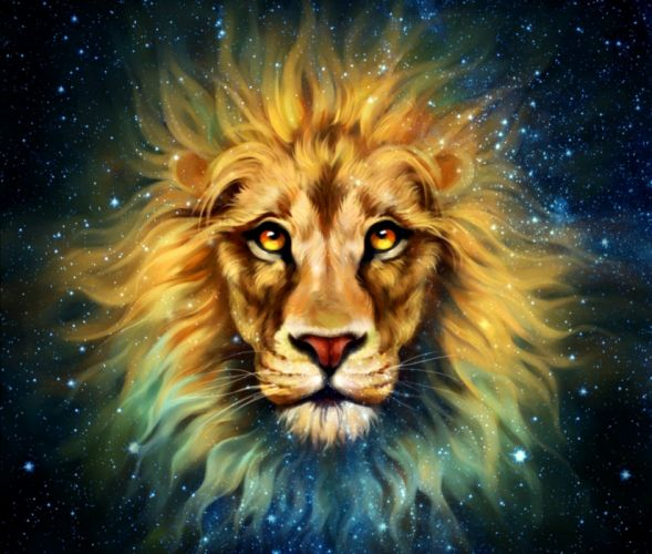 fantasy lion starlion beauty wallpaper