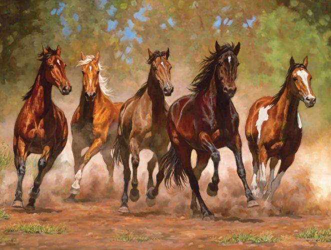 Taking Flight horses beauty animal wallpaper