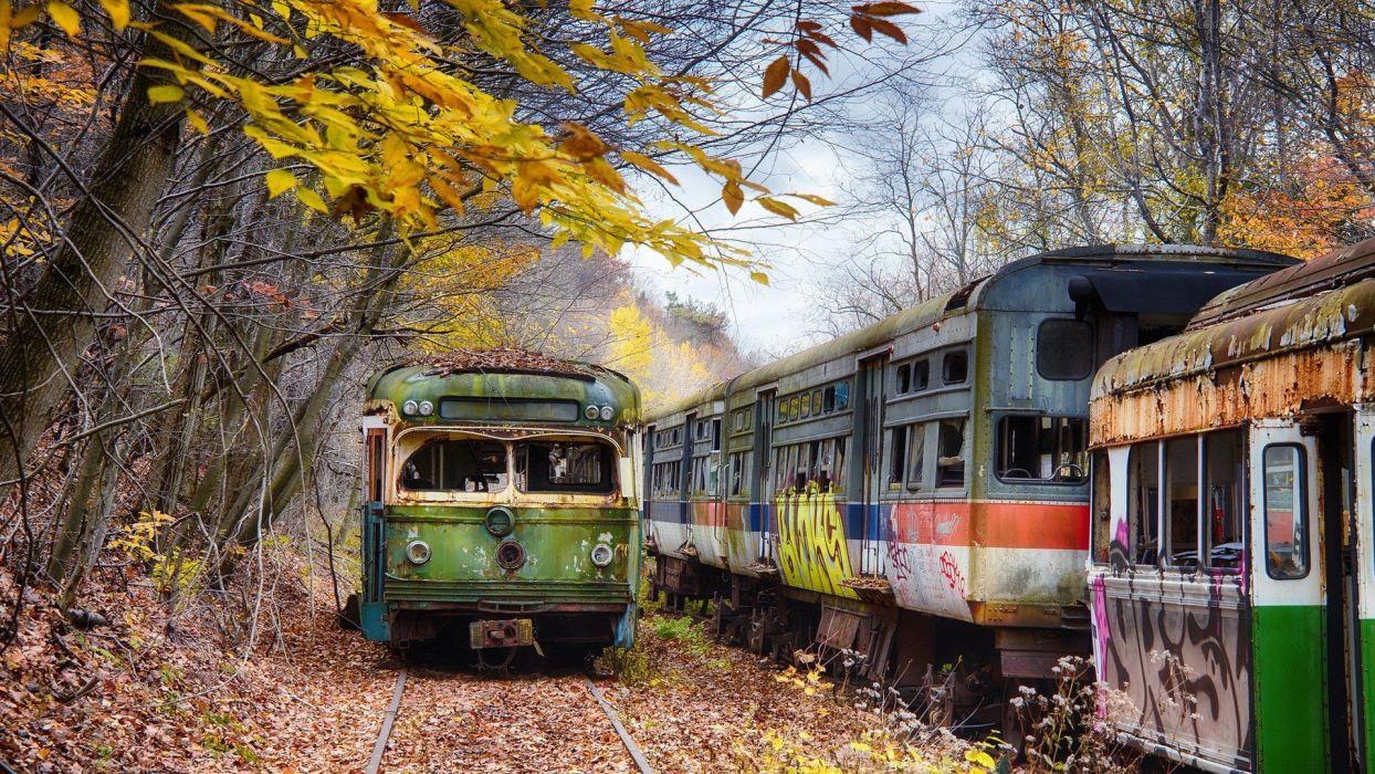 vieja furgoneta tren hojas wallpaper