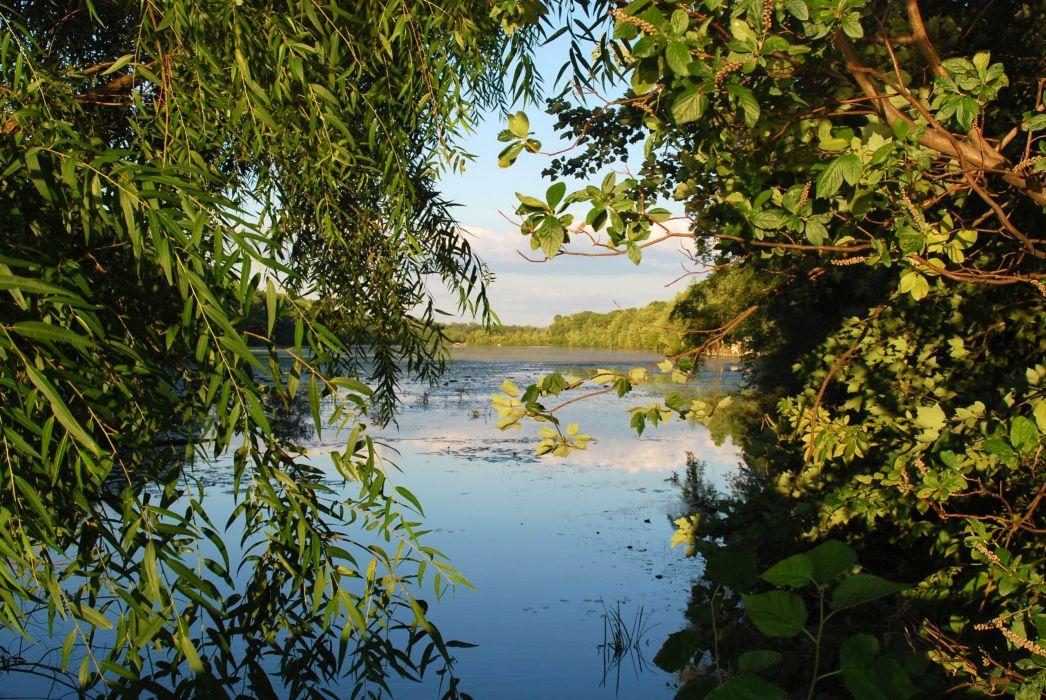 river lake water trees wallpaper