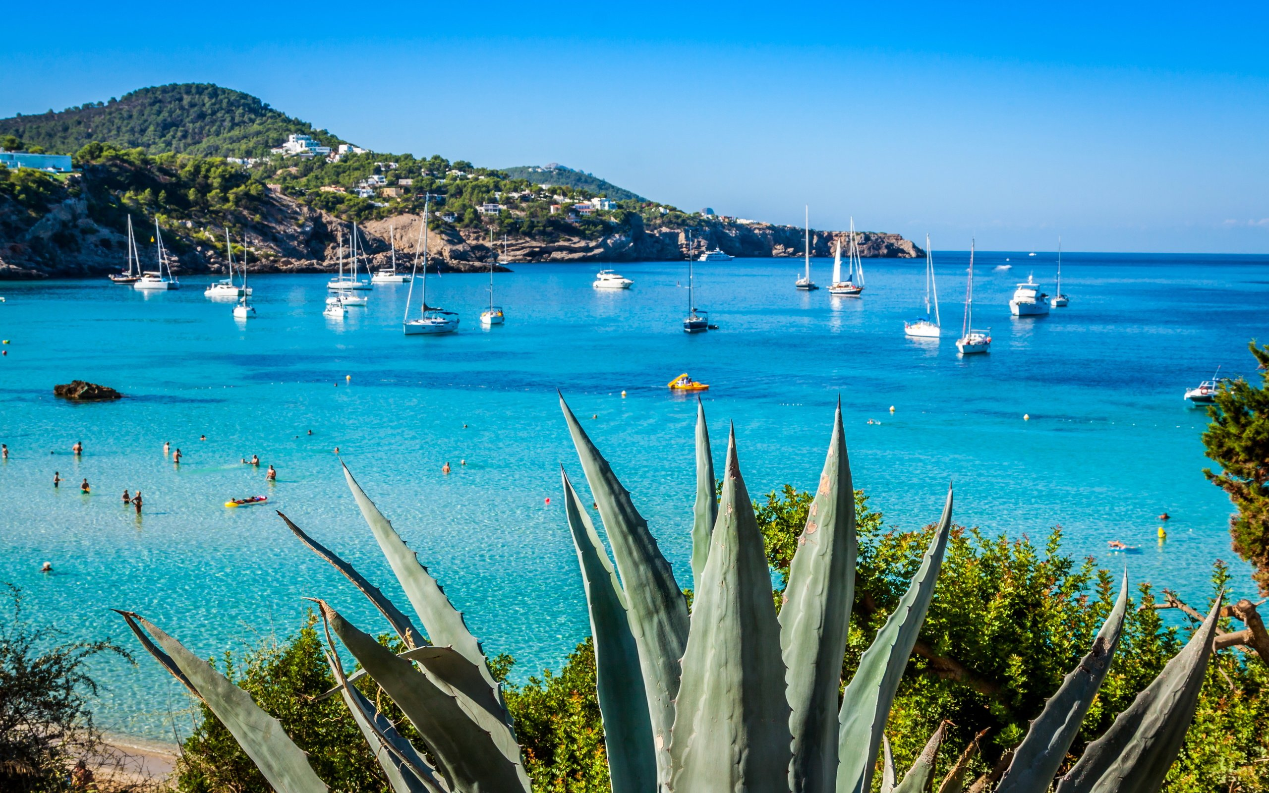 Ibiza Beach Wallpaper 236204