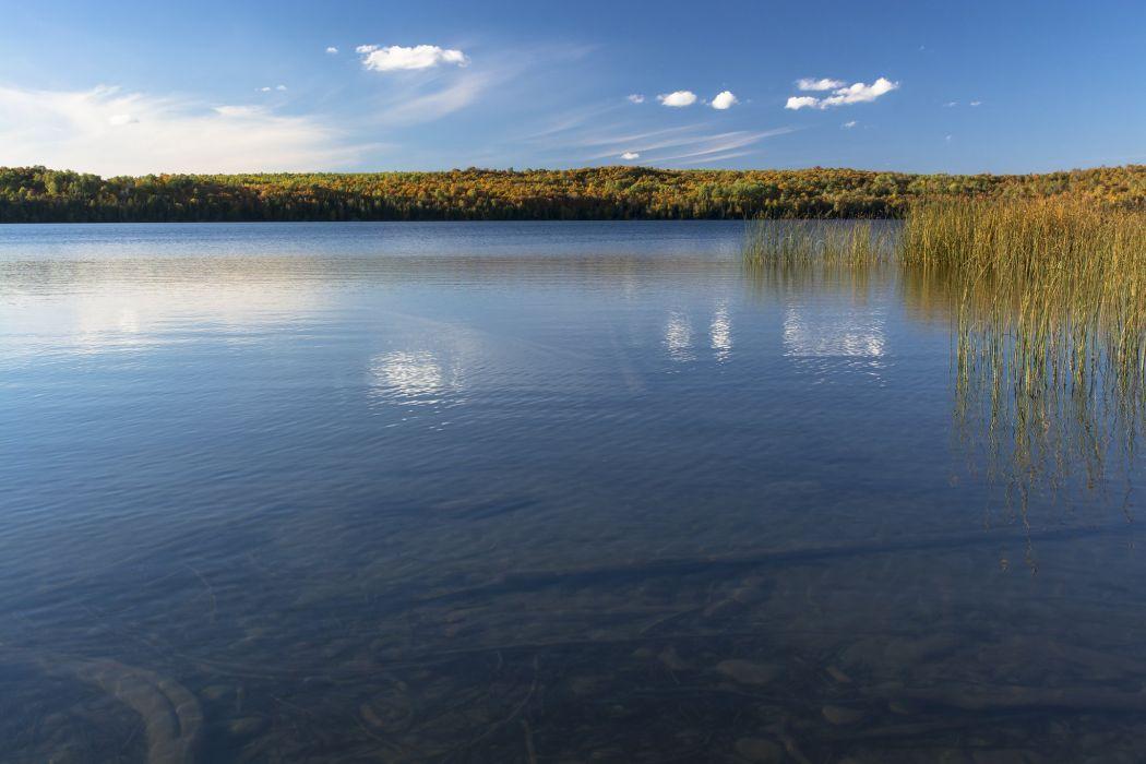 sky lake pond water plant wallpaper